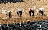 """Hà Nội: Làng nghề mây tre đan Phú Vinh """"lột xác"""", vươn tầm thế giới..."""