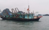 Quảng Ninh: 2 tàu cá tàng trữ ngư cụ trái phép bị phạt 40 triệu đồng