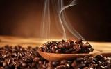 Thị trường ngày 15/5: Giá cà phê lao dốc, hồ tiêu đi ngang