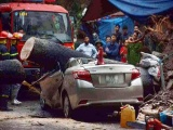 Hà Nội: Cây cổ thụ bật gốc, đè nát chiếc xe Toyota Vios