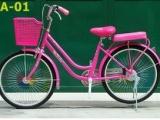 Trao tặng 170 xe đạp cho học sinh nghèo ở địa bàn biên giới vùng biển Hà Tĩnh