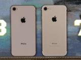 Hàng loạt điện thoại iPhone bị khai tử ở thị trường Việt Nam