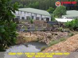 """Thanh Thủy, Phú Thọ: Nhiều trang trại lợn không phép, """"mọc"""" trên đất rừng"""