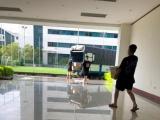 Vụ 850 thùng sữa của công ty CIO bị bắt giữ: Phần lớn vẫn phải chờ kiểm nghiệm chất lượng