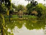 Hà Nội: Thanh tra toàn diện dự án khu du lịch sinh thái Song Phương
