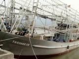 Đã liên lạc được với 10 thuyền viên tàu cá mất tích
