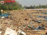 Thanh Hóa: Người nuôi tôm trắng tay sau bão