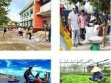 Tập trung khôi phục sản xuất nông nghiệp, công nghiệp sau mưa bão