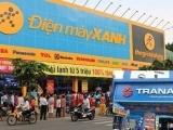 Đại gia Hà thành chi hơn 33 tỷ đồng mua cổ phiếu Trần Anh, 2 ngày lãi 9,4 tỷ