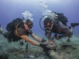 Tuyến cáp quang biển AAG sẽ được khắc phục xong vào ngày mai