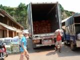 Đà Lạt công khai 17 cơ sở kinh doanh nông sản Trung Quốc