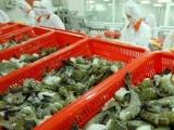 Vì sao tôm Việt Nam 'đắt hàng' ở Nhật Bản?