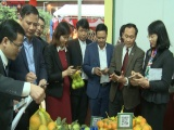 """Đông Anh - Hà Nội: Khai trương """"Chuỗi liên kết sản xuất, kinh doanh thực phẩm kiểm soát an toàn"""""""