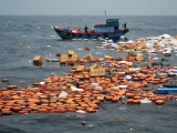 Sóng lớn nhấn chìm tàu chở hàng, 7 thuyền viên thoát nạn