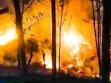 Quảng Ngãi: Rừng keo bốc cháy dữ dội suốt đêm, 1 người tử vong
