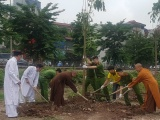 Chùa Pháp Vân phát động trồng cây, 'thay' áo mới cho góc hồ Linh Đàm