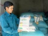 Xây dựng thương hiệu gạo Lệ Thủy bằng tiêu chuẩn OCOP