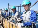 Nhật Bản muốn tuyển 22.000 người Việt Nam sang làm việc