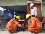 Bão số 6 làm 77.000 hộ dân ở Phú Yên bị mất điện