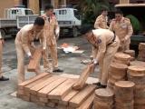 Bắt giữ ô tô chở lậu gần 300 thớt gỗ nghiến