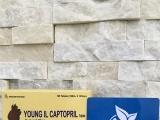 Đình chỉ lưu hành, thu hồi thuốc Young II Captopril Tablet