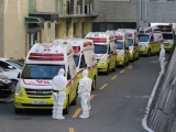 Trong vòng 24h Hàn Quốc có thêm 505 ca nhiễm Covid -19, Iran số ca tử vong ở Iran tăng lên 22