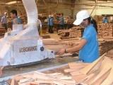 Xuất khẩu gỗ và sản phẩm gỗ Việt Nam sẽ giảm mạnh sau tác động Covid – 19?