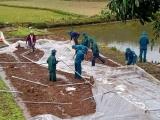 Các tỉnh Tây Bắc bị thiệt hại nặng do mưa đá và dông lốc