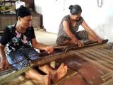 HTX nông nghiệp và thủ công mỹ nghệ Cói Tiên Dung chuẩn bị giải thể