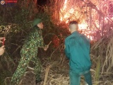 Nghệ An: Lực lượng Ban Chỉ huy Quân sự huyện Tương Dương dũng cảm khống chế thành công cháy rừng