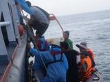 Cứu nạn thành công 13 thuyền viên gặp nạn ở Biển Đông