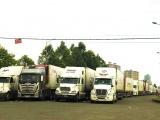 Tăng cường định hướng xuất khẩu chính ngạch