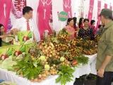 Đề xuất cơ chế đặc biệt đối với chuyên gia kiểm dịch thực vật của Nhật Bản