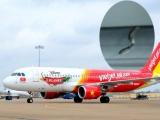 Khoang hành khách máy bay của Vietjet Air xuất hiện 1 con rắn