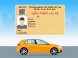 Từ 1/6, giấy phép lái xe được cấp mới sẽ có thêm mã QR
