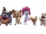Ngất ngây với dàn nhân vật trong Sói 100%: Mê nhất là Freddy với mái tóc hồng 'chất chơi'