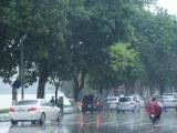 Dự báo thời tiết ngày 1/7: Cả nước có mưa dông
