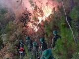 Hà Tĩnh: Hơn 500 người tích cực khống chế vụ cháy rừng