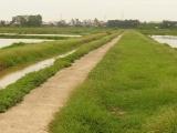 Phú Xuyên quyết liệt thực hiện các dự án tại xã Sơn Hà