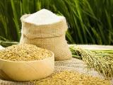 Cơ hội cho hạt gạo Việt Nam khẳng định tại thị trường Châu Âu
