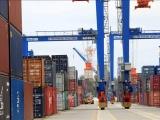 Hàng hóa qua cảng biển duy trì đà tăng trưởng, bất chấp Covid-19