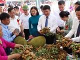 Sơn La: Xuất chính ngạch gần 30 tấn nhãn sang Trung Quốc