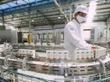 Doanh thu nội địa và xuất khẩu quý II của Vinamilk ghi nhận mức tăng trưởng 2 chữ số