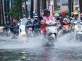 Dự báo thời tiết ngày 31/7: Bắc Bộ đón đợt mưa lớn kéo dài