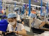 TPHCM: 318 doanh nghiệp được tạm dừng đóng bảo hiểm xã hội
