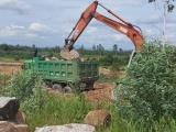 Bình Định: Chính quyền sở tại bất lực trước tình trạng khai thác đất trái phép?