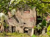 Lý Nhân, Hà Nam: Công ty Hoàng Quân xâm phạm đất đai của người dân?