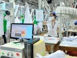 Hỗ trợ doanh nghiệp nâng cao năng suất, chất lượng sản phẩm