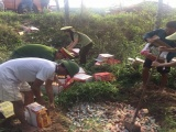 Nghệ An: Tiêu hủy 6.200 chiếc bánh trung thu không rõ nguồn gốc xuất xứ