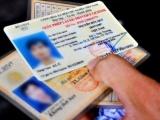 Thông tin về Quyết định thay đổi hệ thống tra cứu giấy phép lái xe là giả mạo